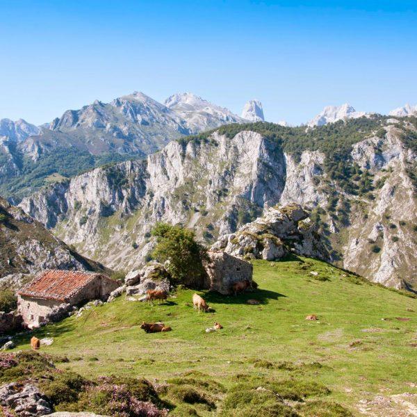 sotres y picos de europa macizo oriental