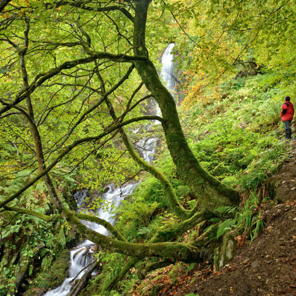6. trekking vivac babia y asturias con threemountains