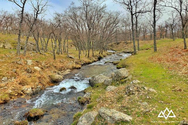 Arroyo del chorro remontando el valle que llega a la Chorrera de San Mamés - Anuncio