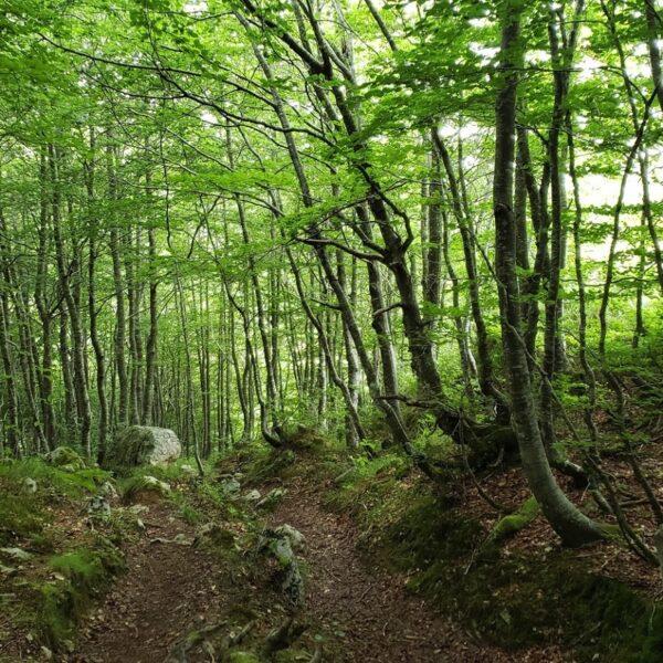 13.cantabria-infinita-valles-pasiegos-three-mountains