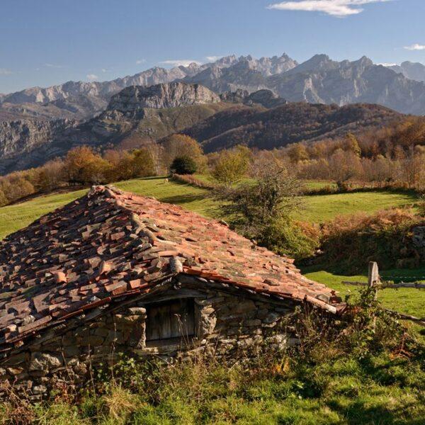 Hayedo de Peloño con Three Mountains