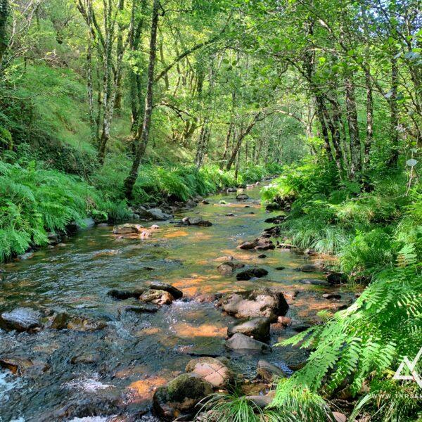 10.los-oscos-galicia-asturias-con-three-mountains